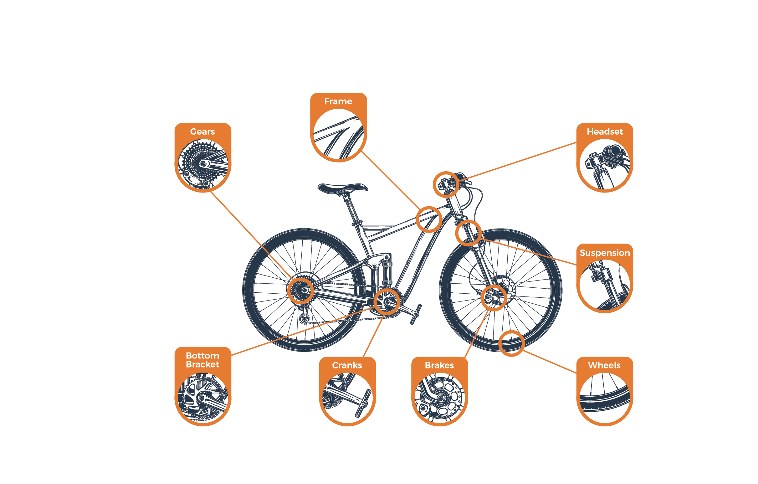 Buying a Used Mountain Bike: The Definitive Guide | Ixplor